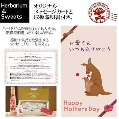 _母の日ギフト(カード).jpg