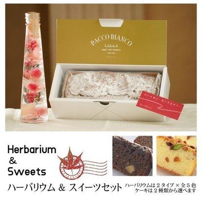 _keiro_herbarium.jpg